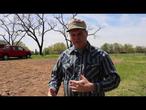 Planting a pollinator plot
