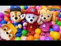 Paw Patrol Home Alone Funny Toy Learning Video For Kids