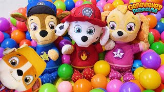 Paw Patrol Home Alone Funny Toy Learning Video for Kids!