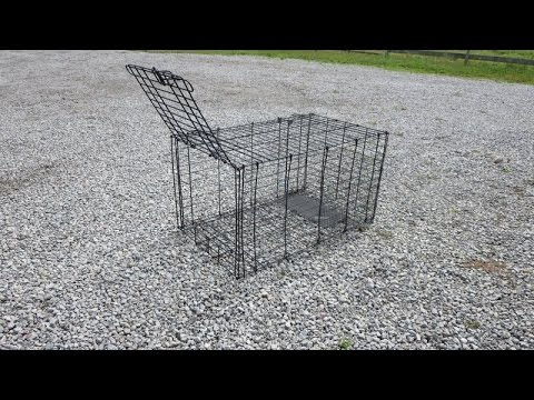 DIY Live Trap from Dog Kennel  - UPDATED