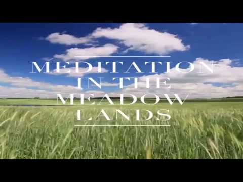 MEDITATION IN THE MEADOW LANDS