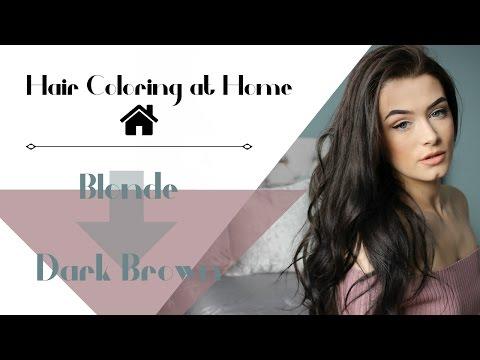 Blonde to Dark Brown   Hair Coloring at Home   Meet Me In Vogue