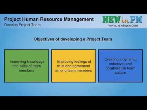 Chapter 9 - Develop Project Team