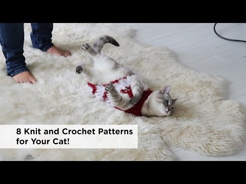 8 Knit and Crochet Projects for Your Cat!