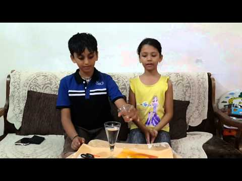Science experiment by Dhvanya & Ashmi Class 4/B
