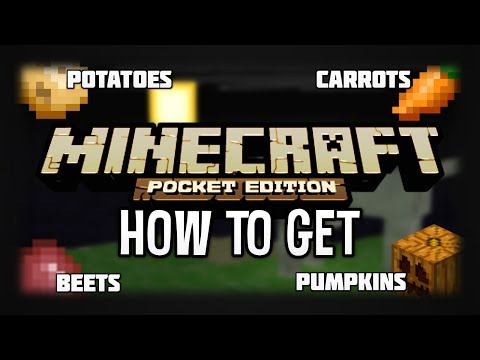 How To Get Beets, Pumpkins, Carrots & Potatoes in Minecraft Pocket Edition