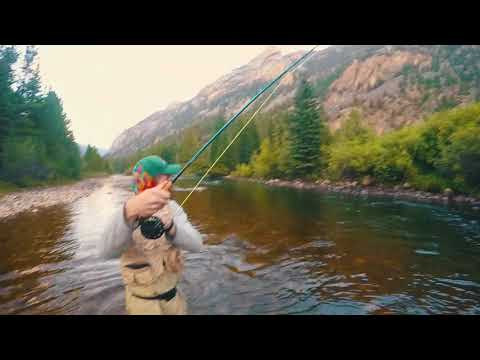 INSANE FLY FISHING IN COLORADO