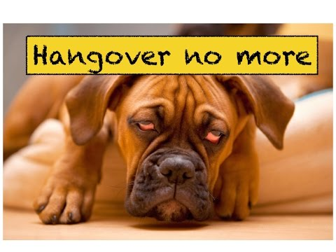 ✔ Top 3 Natural remedies for Hangover that work! Don't ever suffer from hangover again