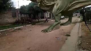 Download T rex!!!! Video