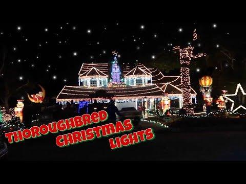 Thoroughbred Christmas Lights | Rancho Cucamonga, CA |