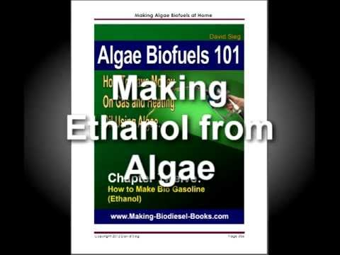 Algae Biofuels homemade bio reactor to grow your own algae to make biofuels or healthy food