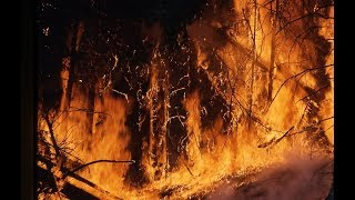 Wildfires California 2017 Video - Wildfires Northern California Live Video Footage