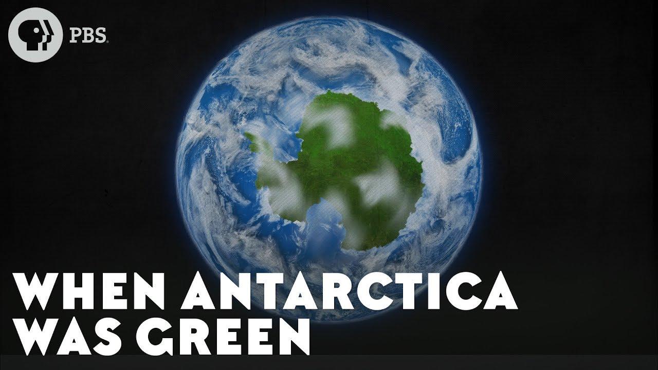 When Antarctica Was Green