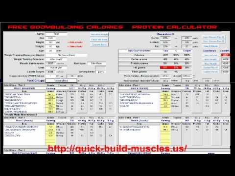 Free Bodybuilding Calories And Protein Calculator.avi