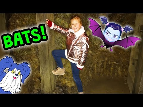 Assistant Cave Hunt for Vampirina and Learning about Bats and Wolves