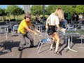 Chair Pulling Prank In Birmingham