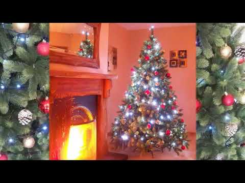Best Artificial Full PE Hinged Christmas Tree
