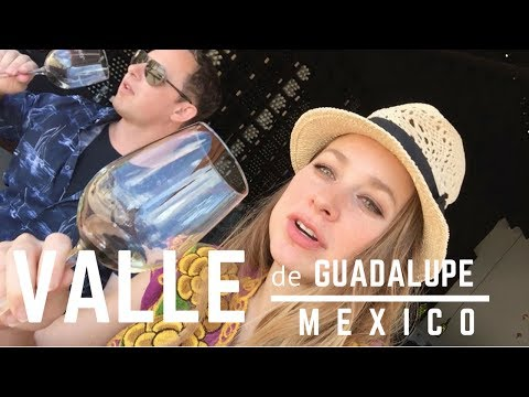 TRIP TO VALLE DE GUADALUPE - MEXICO'S WINE REGION - Travel Vlog 🇲🇽 🍇 🍷