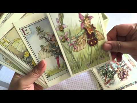 Flower Fairy 100 Postcards BY Cicely Mary Barker