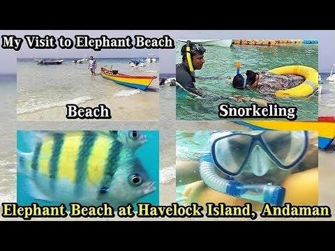 Elephant Beach Andaman | Snorkeling & Sea Walk at Elephant Beach Havelock Island Andaman
