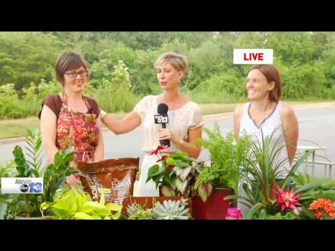 Thyme in the Garden: The Carter Sisters Talk Plants, Part 1