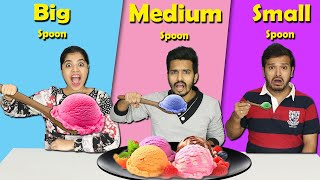 Big Vs Medium Vs Small Spoon Food Challenge   Hungry Birds