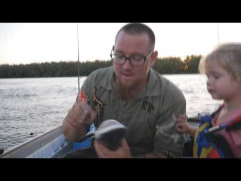 how to catch logan river bull sharks