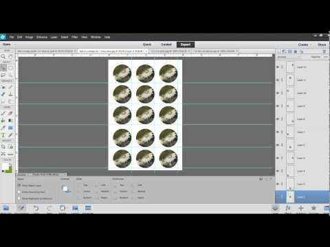 How to Create a Collage Sheet In Adobe Elements 12 -DYI