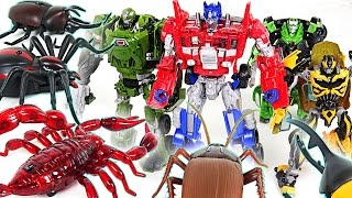 Transformers VS Insect army!! Save Peppa Pig from Robot spider, Scorpion, Cockroach!! - DuDuPopTOY
