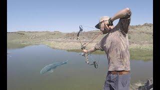 Pesca Con ARCO Y Flecha Parte 2 | Caza Y Pesca