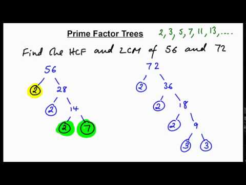 Prime factor trees - finding HCF + LCM (N)