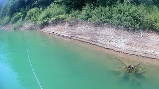 Fly fishing for perch|Perch fly fishing with little streamer|Fly fishing Croatia|Lokvarsko lake