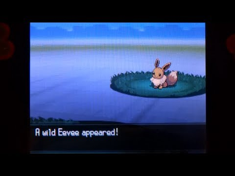 How to Catch Eevee - Pokemon Black 2 and White 2