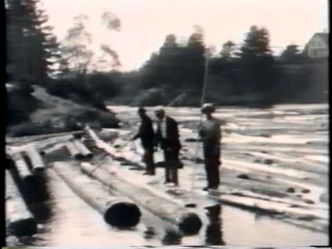From stump to ship: A 1930 logging film