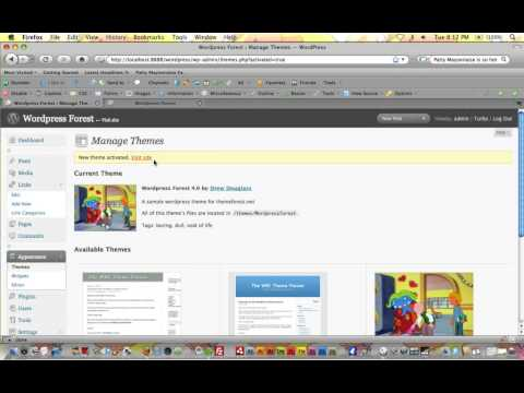 Wordpress Tutorial Trainer Part 3 -Creating a Theme From Scratch