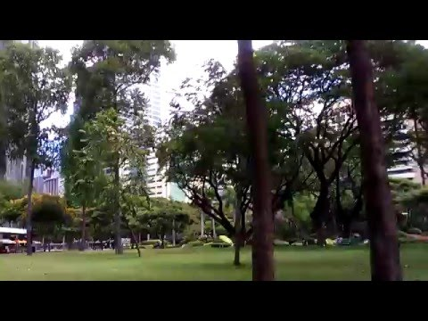 Park in the Heart of Makati City