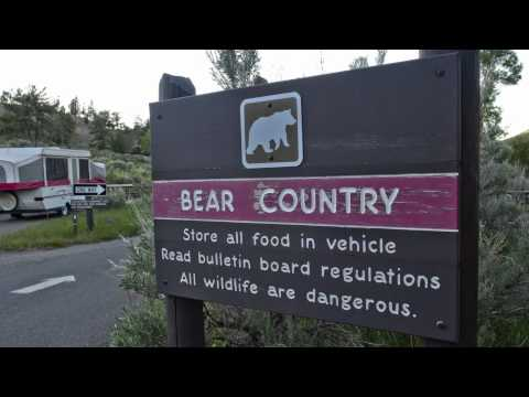 Carry and Recycle Bear Pepper Spray - Yellowstone