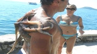 20 Sea Creatures That Actually Exist