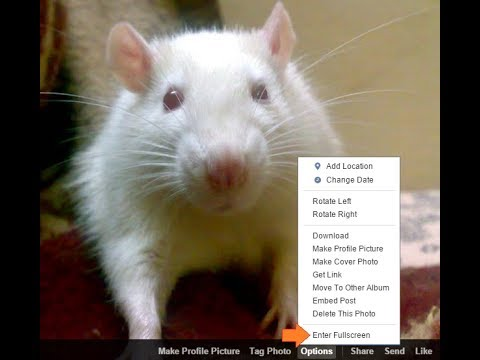 How to Increase Size (Enlarge) of Facebook Photo?: Facebook photo ko Kaise Bada Kare?