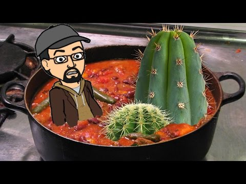 Rafferty's Turkey Cactus Chili - RIPOFF RECIPE