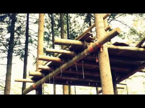 TreeHouse - 0/15  Platform example