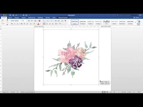 How to resize watercolor graphics clipart on microsoft word windows