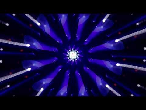 Light & Motion -