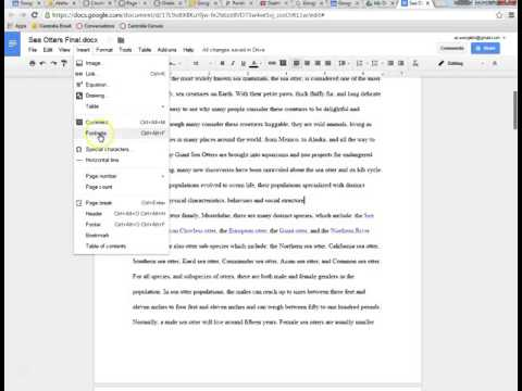 Page Numbers and Footnotes in Google Docs
