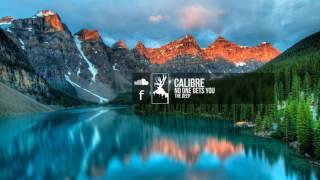 Calibre - No One Gets You