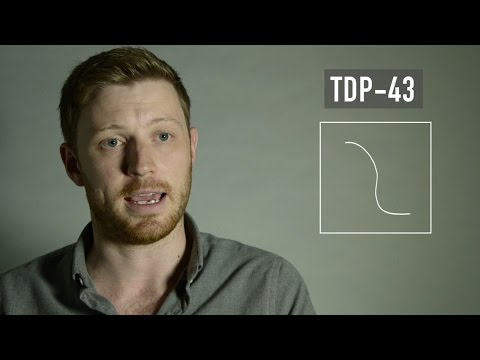 What Causes ALS? | Research Revealed | TDP-43