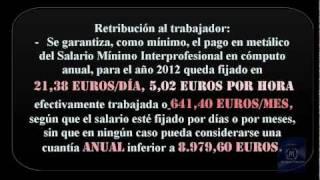 Empleadas de Hogar- TUS DERECHOS-.wmv