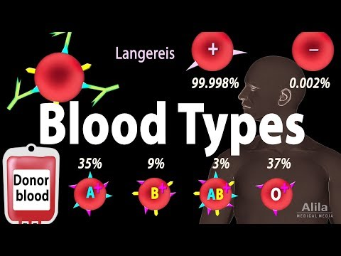 Blood Types, Blood Group Systems and Transfusion Rule, Animation