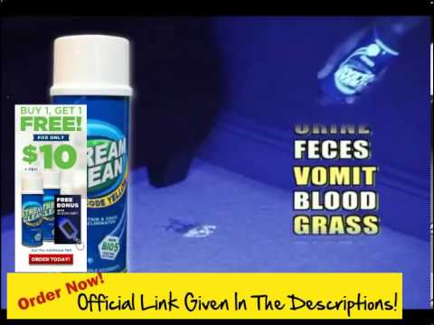 How Do I Get Stains Out Of Carpet! Get Stream Clean ! The Stand Up Way To Blast Pet Stains & Odors A