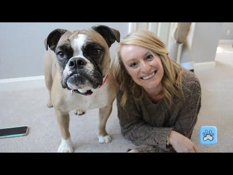 Pet Health Network Blooper Reel!